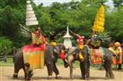 Sampran Elephant Ground and Zoo Tour